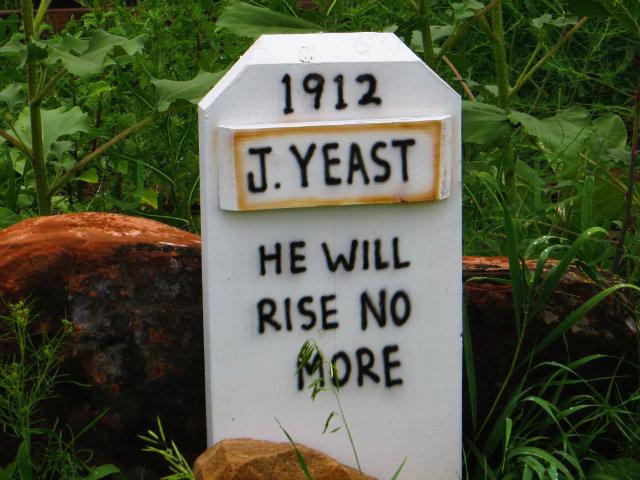 j yeast