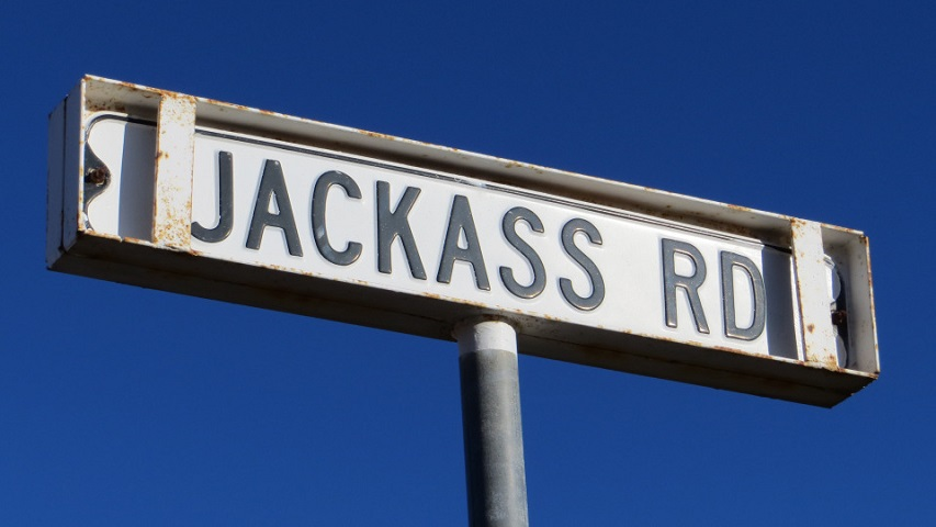 jackass road