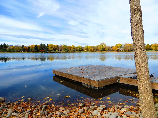 thoughts-on-a-dock
