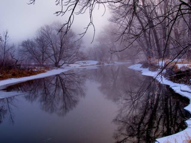 on a snowy river bank